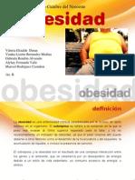 Obesidad Prevención y tratamiento