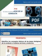Bases Biológicas Psicología