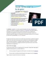 deleccion (1)