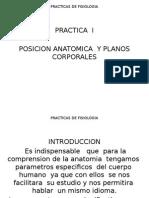 Practica 1 de Fisiologia