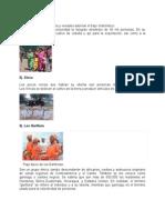 Grupos Etnicos de Guatemala1
