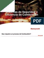 Sistemas de Seguridad y Eficiencia de Combustion