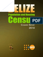2010 Census Report
