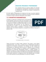 CAPAITULO 12 .docx