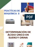 12. DETERMINACIÓN DE ACIDO URICO  EN SUERO Y ORINA