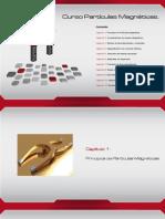 ILOG - Curso Basico Particulas Magneticas 2014