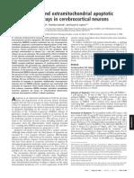 PNAS-2000-Budd-6161-6