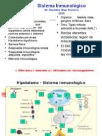 1sistemainmunologico-121010172012-phpapp02