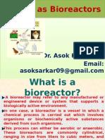 Animal as Bioreactors