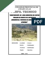 PERFIL LOCAL MUNI CCACCE CORREGIDO.doc