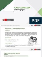 PPT JEC-Monitoreo y Asesoría