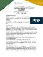 Pre-Informe Química Inorganica