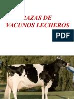 Razas Vacunos Lecheros I.ppt