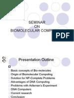 Bio Molecular Computing