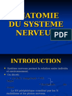 S1 ANATOMIE DU SYSTEME NERVEUX (2).ppt
