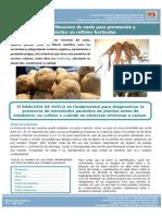 Muestreo de Suelo Para Prevencion y Diagnostico en Cultivos Horticolas