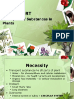 The Transport of Substances in Plants