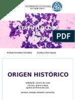 Sthapylococcus Aureus