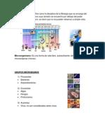 Estructura microbiana