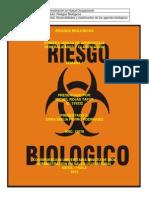 taller unidad 1 de riesgos biologicos