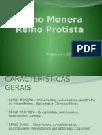 reinomoneraprotista-111121185528-phpapp01