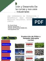 agroindustriaseminario-121204083209-phpapp01.pptx