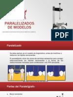 Paralelizado de Modelos en PPR