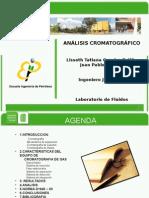 análisis-cromatrográfico