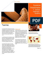 Artículo Taenias