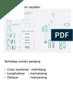 Histologi 2.pptx