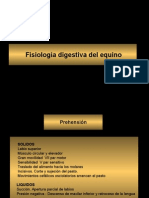 Fisiologia Digestiva Del Equino