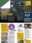 La Mochila Agosto_tortugas