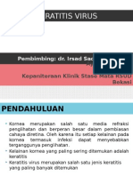 ppt keratitis virus
