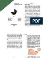 Seminar Jurnal Maternitas Booklet 18-3-2015