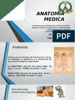 Anatomia Medica