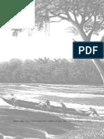 Wallace_Viagens Pelo Amazonas e Rio Negro_LIVRO