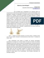 Memoria e Aprendizagem - Rodrigo Pavão(1)