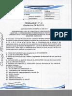 RESOLUCION 41.pdf