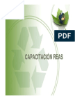 Presentación REAS 2013