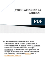 7.- Articulacion de La Cadera