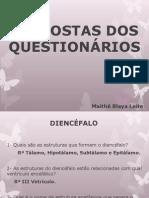 Respostas Dos Questionários - Neuro Psico