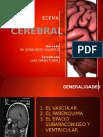 Edema Cerebral