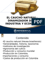 Presentación Generalidades Sobre El Caucho