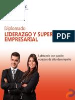Diplomado Liderazgo y Supervisión Empresarial