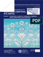 Peces del Atlantico Vol I 607