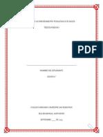 Plan de Acompañamiento Pedagógico de Inglés - 6