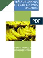 Camara Frigorifica Para Bananos