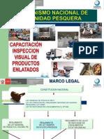 Inspeccion Visual de Cierre-SANIPES QW