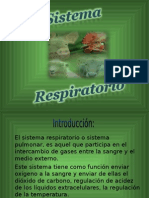 Sistema Respiratorio en Animales Domesticos