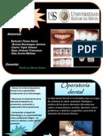 101248055 Operatoria Dental